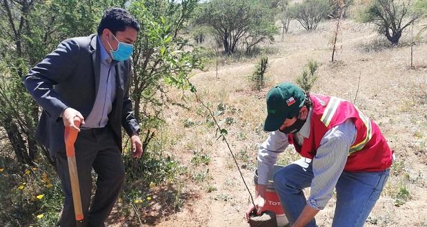 Este programa tiene como objetivo mejorar la calidad de vida de los chilenos y chilenas por medio de los beneficios que entregan los árboles y generar conciencia de ellos desde un punto de vista cultural, ambiental y económico.