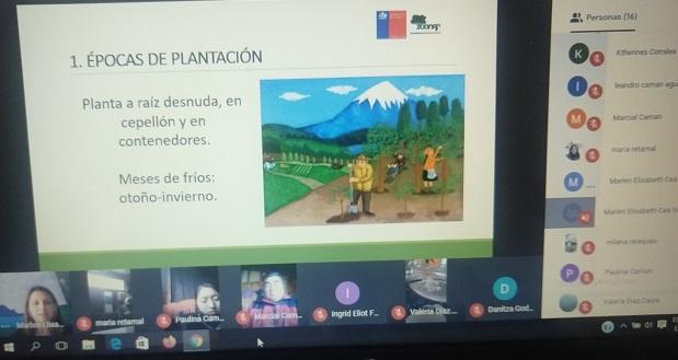 CONAF Los Ríos llevó a cabo dos capacitaciones por medio de video-llamada, destinadas a comunidades del Ranco.