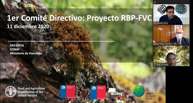En este taller del Proyecto de Pagos Basados en Resultados REDD+ se destacó que Chile recibió un total de US$63.607.552 que corresponden al pago por las reducciones de emisiones de 14.530.220tCO2eq.