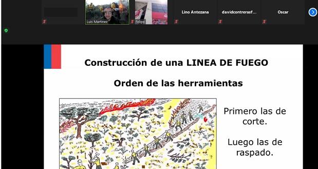 Como expositor del temario estuvo el ingeniero forestal Luis Martínez Díaz, profesional de extensa trayectoria en la Corporación Nacional Forestal.