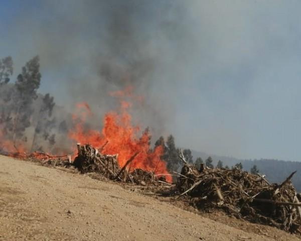 incendios quemas - archivo