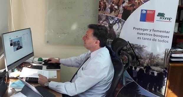 Luis Gianelli, gerente de Bosques y Cambio Climático de la Corporación Nacional Forestal (CONAF), participó de manera online representando al país.
