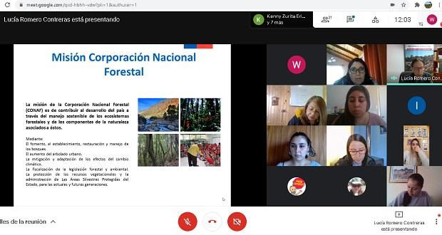 """Cabe destacar que las comunas de Arauco, Curanilahue, Los Álamos, Lebu, Cañete y Tirúa, forman parte del programa """"Prevención de Incendios Forestales en Zonas de Interfaz""""."""