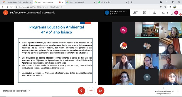 Más de cincuenta docentes de las comunas de Chillán, Chillán Viejo, Bulnes y Quillón, están participando del Programa de Educación Ambiental.